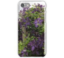 Clematis Vine iPhone Case/Skin