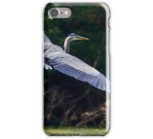 Great Heron iPhone Case/Skin