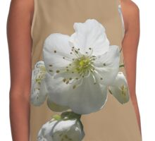 cherry tree in blossoms on iced coffee background Contrast Tank