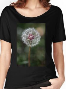 Dandelion Seed Head Women's Relaxed Fit T-Shirt
