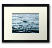 Dolphin in open water Framed Print