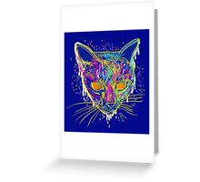 candy cat Greeting Card