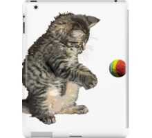 kitty cat playing ball iPad Case/Skin