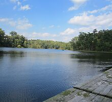 Lake Ridge Reflecting by Respite Artwork by Respite-Artwork