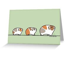 Mother Guinea-pig with Babies Greeting Card
