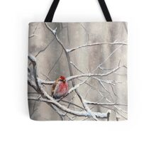 Red Bird On Snowy Branches - Winter Scene with Common Redpoll Tote Bag