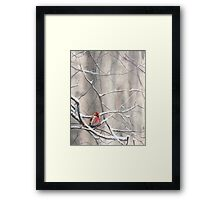 Red Bird On Snowy Branches - Winter Scene with Common Redpoll Framed Print