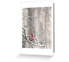 Red Bird On Snowy Branches - Winter Scene with Common Redpoll Greeting Card