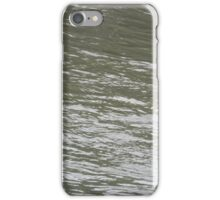 Current in Ladybird Lake - Best viewed larger iPhone Case/Skin