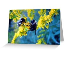 bee-cause two heads are better than one........ Greeting Card