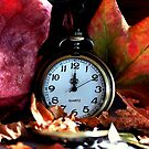 Autumn Leaves & Watch by Evita