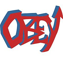 Obey Graffiti Photographic Print