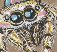 Jumping Spider - The Hurried Hawk Sticker
