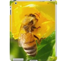 Gossamer wings iPad Case/Skin