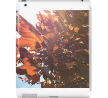 Maple Lens Flare iPad Case/Skin