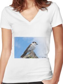 Gray Jay With Blue Sky Background Women's Fitted V-Neck T-Shirt