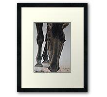 Graceful Framed Print