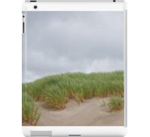 Sand Dunes and Grass iPad Case/Skin