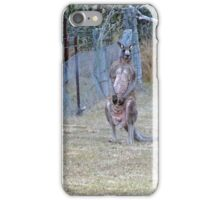Eastern Grey Kangaroos iPhone Case/Skin