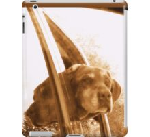 DOUBLE VISION CHOCOLATE LAB iPad Case/Skin