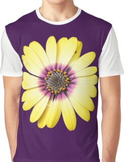Purple and Gold Graphic T-Shirt