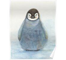 Baby Emperor Penguin Poster