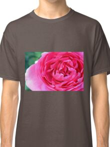 Pink roses in the garden. natural background. Classic T-Shirt