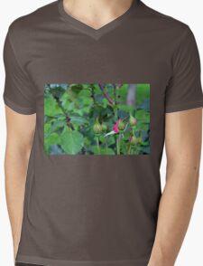 Pink roses in the garden. natural background. Mens V-Neck T-Shirt