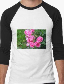 Pink roses in the garden. natural background. Men's Baseball ¾ T-Shirt