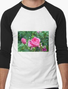 Pink roses in the garden. natural background. Men's Baseball ¾ T-Shirt