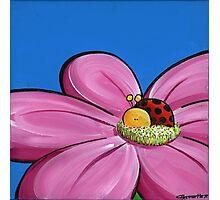 Splatter Flowerbed - Ladybeetle Photographic Print
