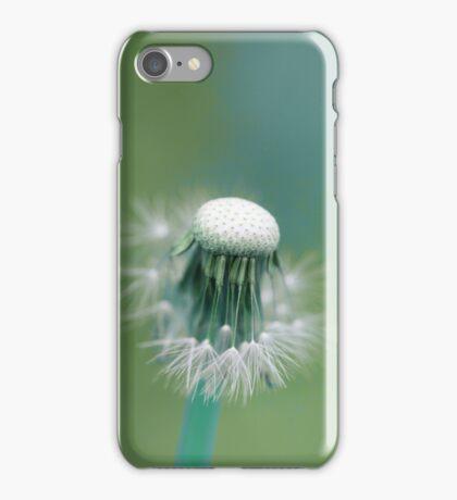 Dandelion blue iPhone Case/Skin