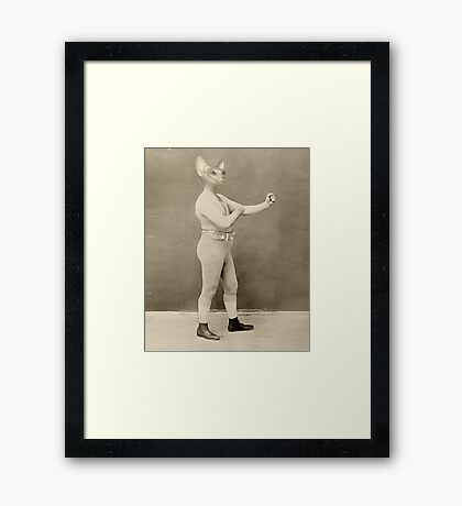 Temple Boxer Framed Print