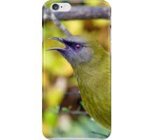So Handome - Male Bellbrid - NZ iPhone Case/Skin
