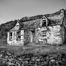 Highland Croft by Dave Hare
