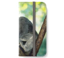 Koala  iPhone Wallet/Case/Skin
