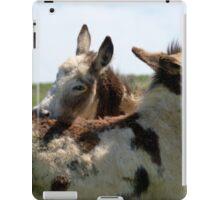 Donkey friends. iPad Case/Skin