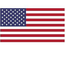 Made In USA Flag Decals - American Product Sticker Photographic Print