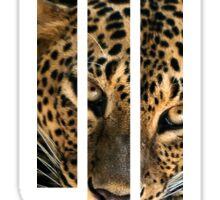 Skrillex Leopard design Sticker