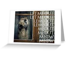 Let me out...Meow Greeting Card