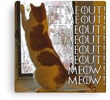 Let me out, lemeout, meout, meow Canvas Print