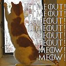 Let me out, lemeout, meout, meow by Herbert Shin