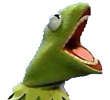 Kermit the frog screaming from hell Photographic Print