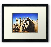 Driftwood Sculpture Framed Print