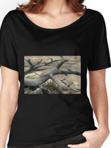 Canyonlands 49 Women's Relaxed Fit T-Shirt