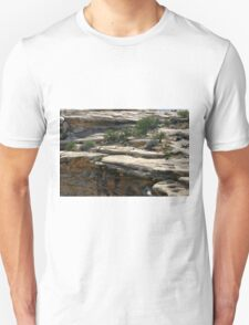 Canyonlands 48 Unisex T-Shirt