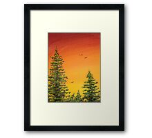 Orange Sky and Pines Framed Print