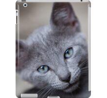 Cute little kitten iPad Case/Skin