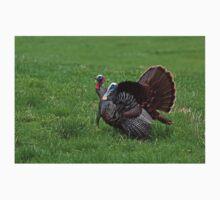 Wild turkeys One Piece - Long Sleeve