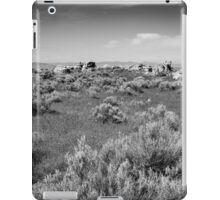 Sage & Ash iPad Case/Skin